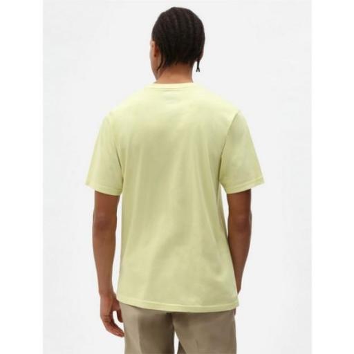 DICKIES Camiseta Icon Logo Tee Mellow Green [1]