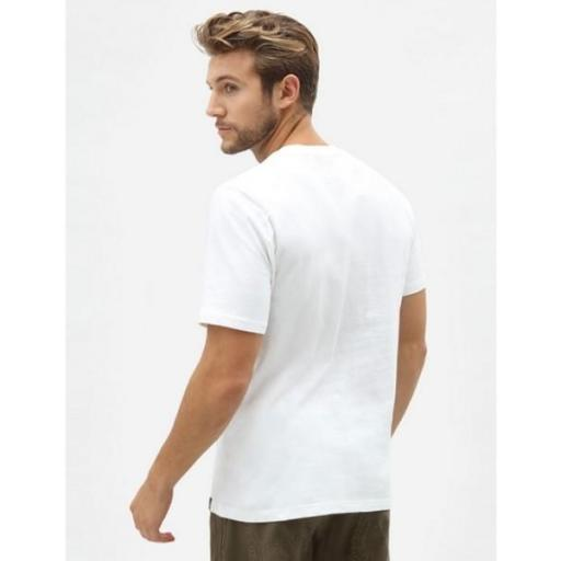DICKIES Camiseta Icon Logo Tee White [1]