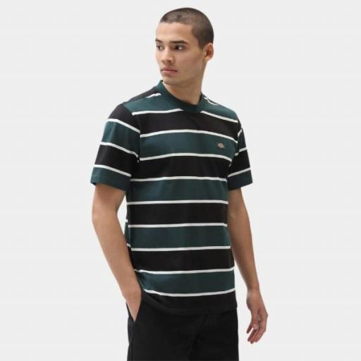 DICKIES Camiseta Oakhaven SS Ponderosa Pine [0]