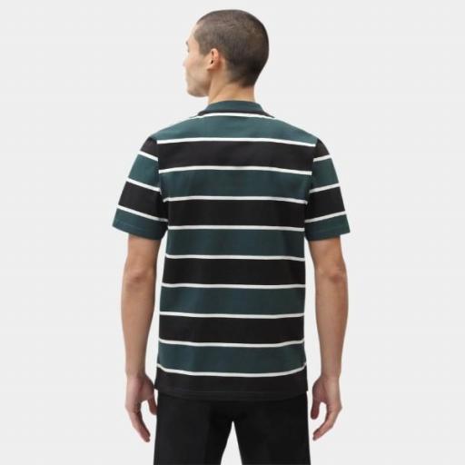 DICKIES Camiseta Oakhaven SS Ponderosa Pine [2]