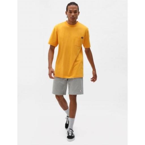 DICKIES Camiseta Porterdale Mens Short-Sleeved T-Shirt Cadnium Yellow [3]