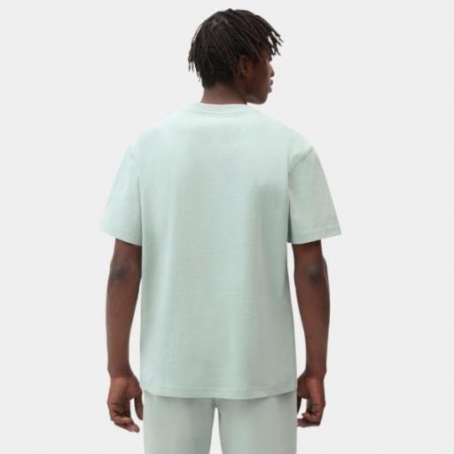 DICKIES Camiseta Porterdale Mens Short-Sleeved T-Shirt Jadeite [2]