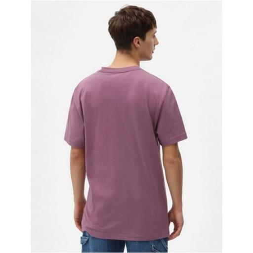 DICKIES Camiseta Porterdale Mens Short-Sleeved T-Shirt Purple Gumdrop