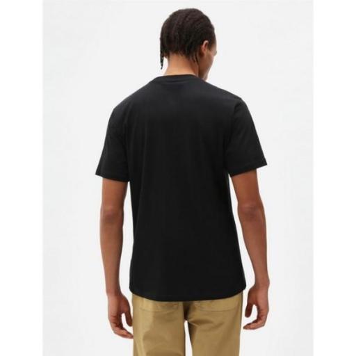 DICKIES Camiseta Quamba Box Tee Black [3]