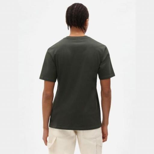 DICKIES Camiseta SS Mapleton T-Shirt Olive Green [0]