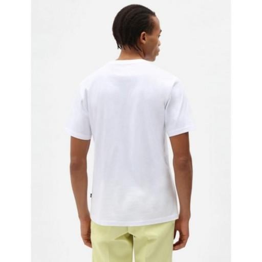 DICKIES Camiseta SS Mapleton T-Shirt White [1]