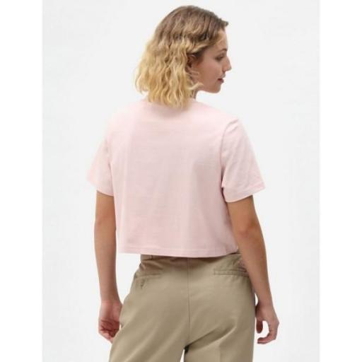 DICKIES Camiseta SS Porterdale Crop W Light Pink [1]