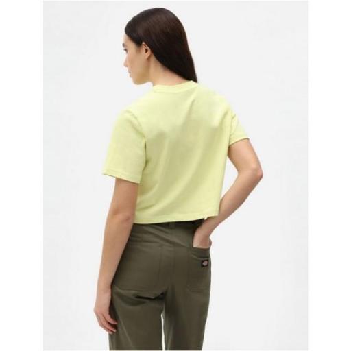 DICKIES Camiseta SS Porterdale Crop W Mellow Green [1]