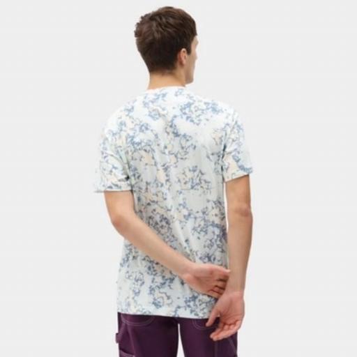 DICKIES Camiseta Sunburg Tee Fog Blue [1]