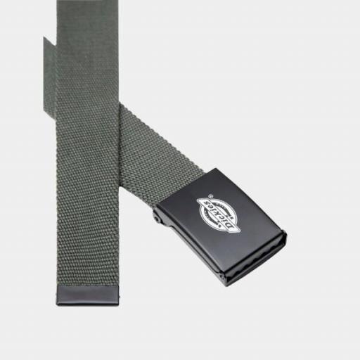 DICKIES Cinturón Orcutt Webbing Belt Olive Green [2]