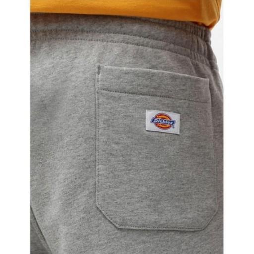 DICKIES Pantalón Champlin Grey Melange Short [2]