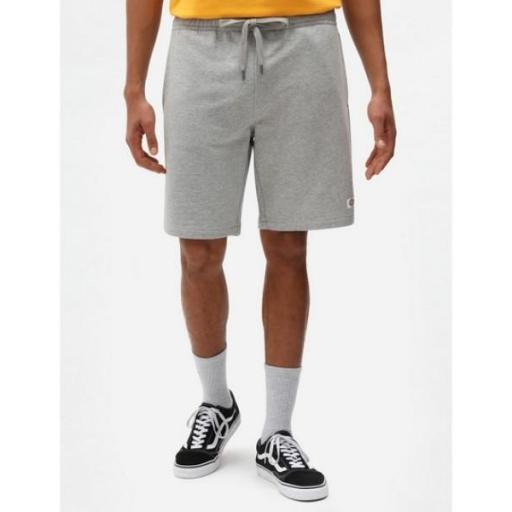 DICKIES Pantalón Champlin Grey Melange Short