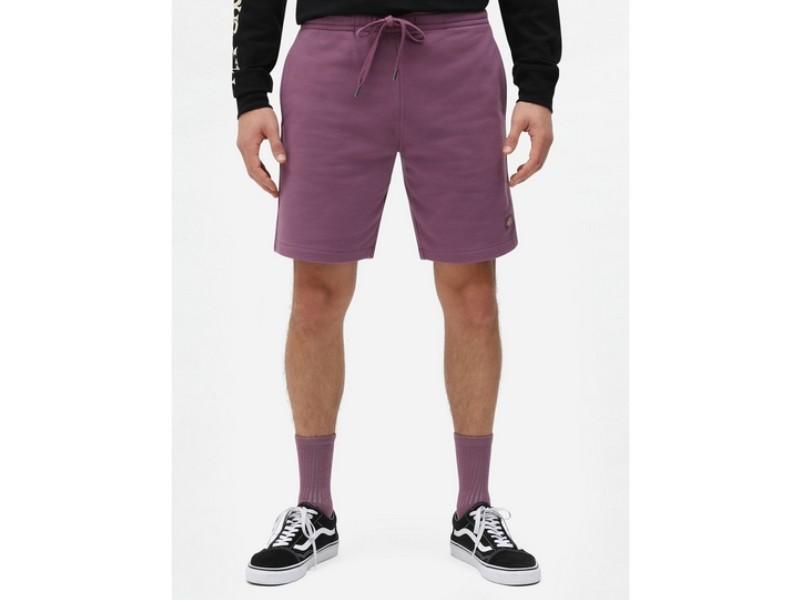 DICKIES Pantalón Champlin Grey Purple Gumdrop