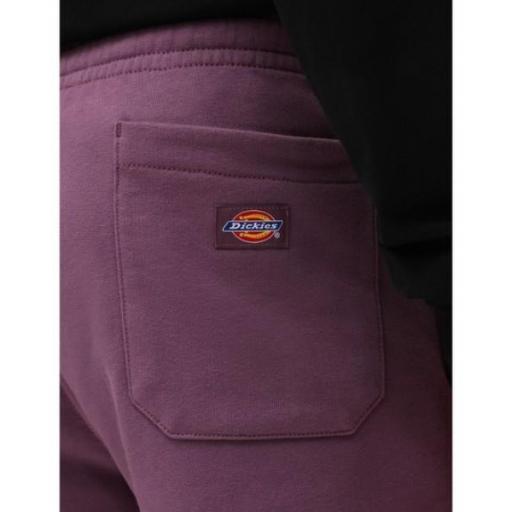 DICKIES Pantalón Champlin Grey Purple Gumdrop [2]