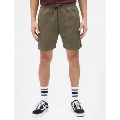 DICKIES Pantalón Pelican Rapids Black Military Green