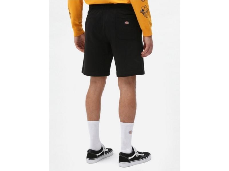 DICKIES Pantalón corto Champlin Black