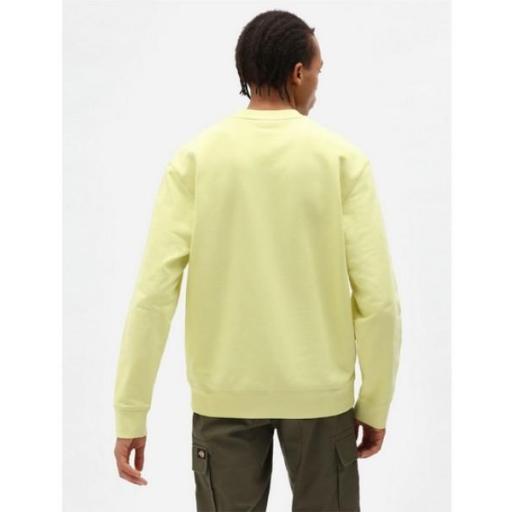 DICKIES Sudadera Loretto Sweatshirt Mellow Green [1]