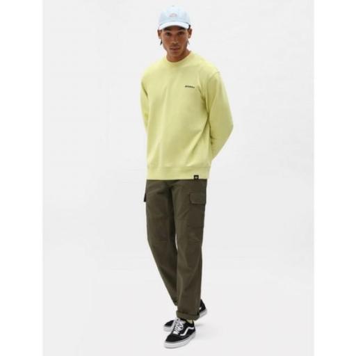 DICKIES Sudadera Loretto Sweatshirt Mellow Green [3]