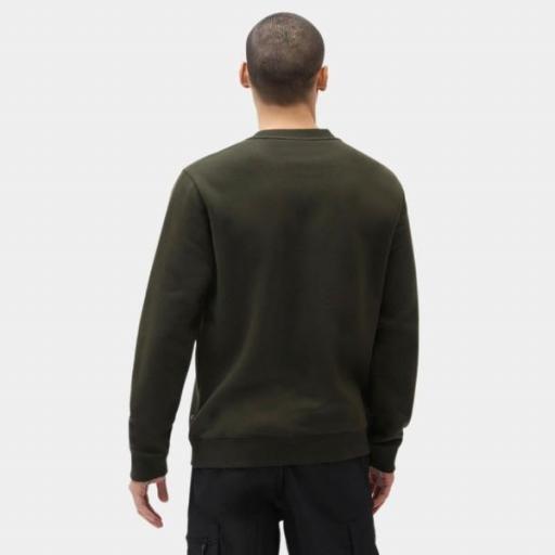 DICKIES Sudadera Oakport Sweatshirt Olive Green [1]