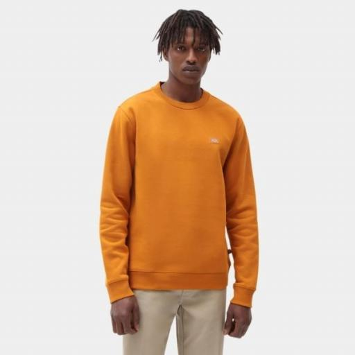 DICKIES Sudadera Oakport Sweatshirt Pumpkin Spice [1]