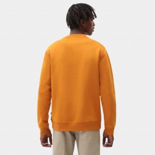 DICKIES Sudadera Oakport Sweatshirt Pumpkin Spice [0]