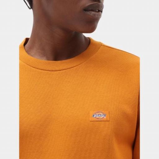 DICKIES Sudadera Oakport Sweatshirt Pumpkin Spice [2]