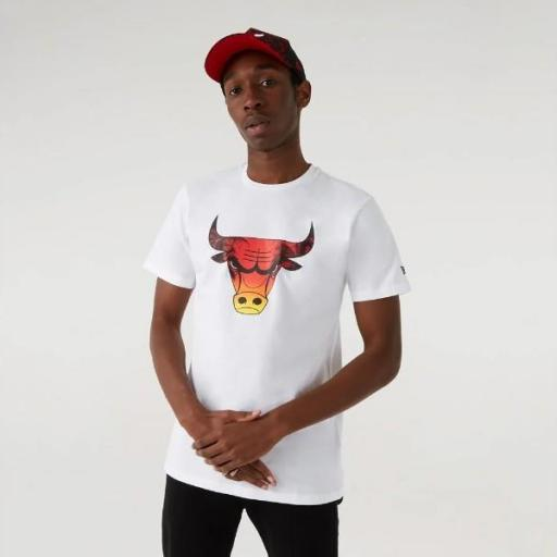 NEW ERA Camiseta NBA Summer City Infill Tee Chicago Bulls White