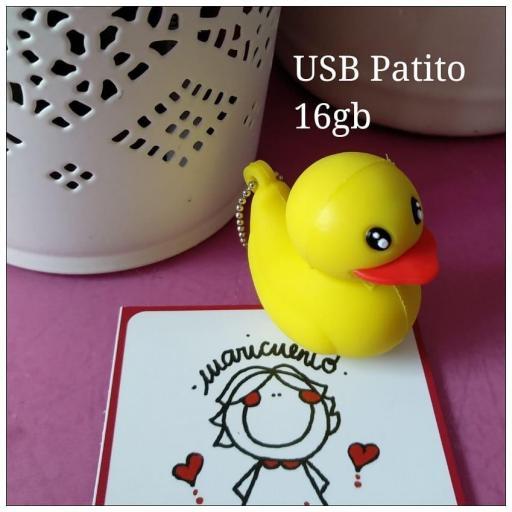 Usb Patito
