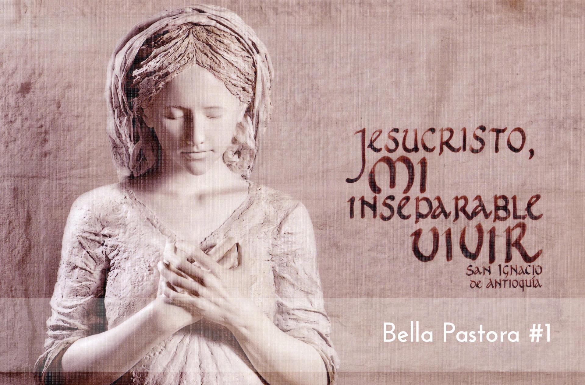 Bella Pastora #1 Foam