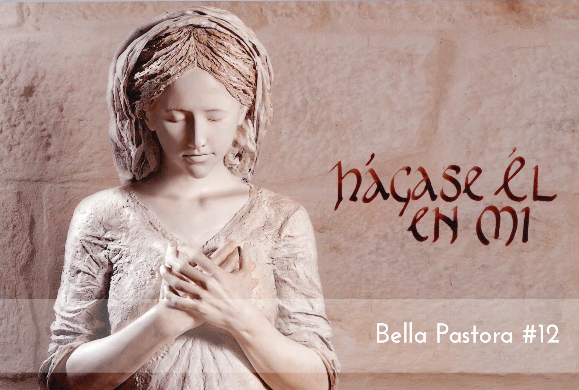 Bella Pastora #12 Foam
