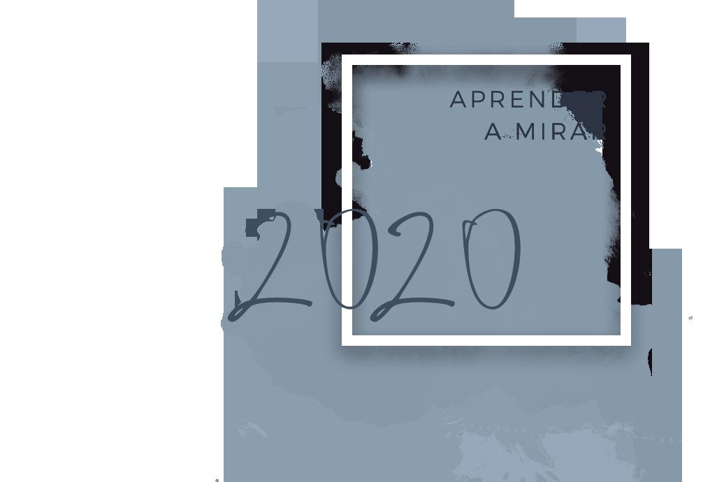 APRENDER A MIRAR 2020.png