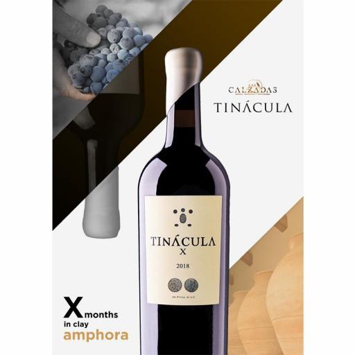TINACULA X  [2]