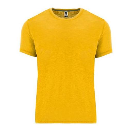 Camiseta Terrier [1]
