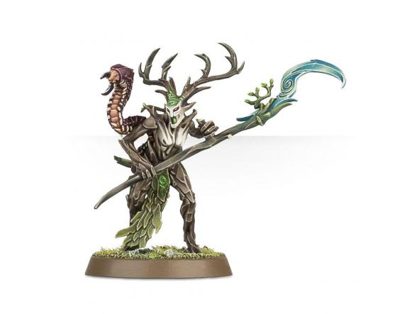 Start Collecting Sylvaneth [1]
