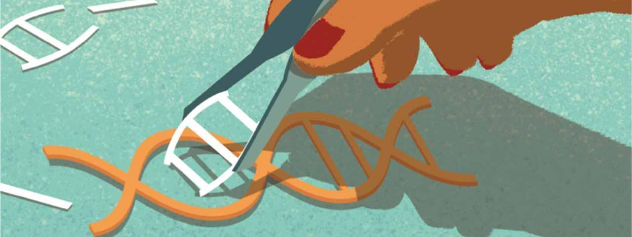 Los impulsores de la técnica CRISPR pronostican que en pocos años curará enfermedades