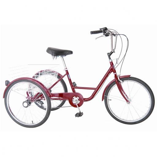 Triciclo 5 velociades [1]