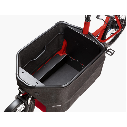 BICICLETA CARGO EBIKE PACKSTER 70 TOURING RIESE & MÜLLER [1]