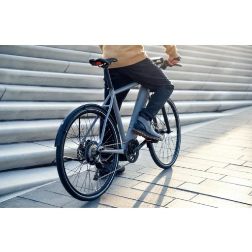 BICICLETA ELECTRICA ROADSTER TOURING RIESE & MÜLLER [3]