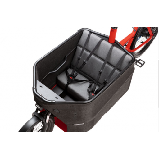 BICICLETA CARGO EBIKE PACKSTER 70 TOURING RIESE & MÜLLER [2]
