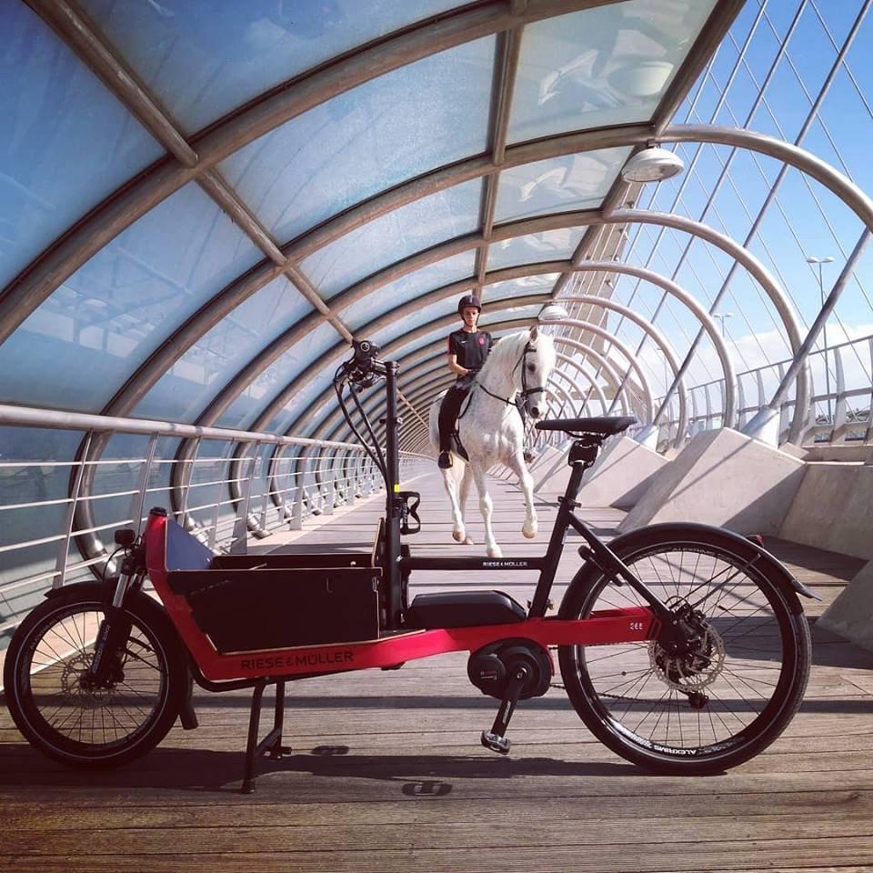 cargo bike bicicleta de carga zaragoza