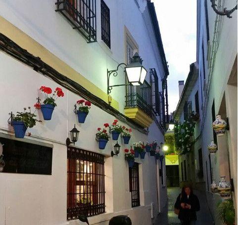 Homestay Exchange in Spain (De 1 a 3 meses)