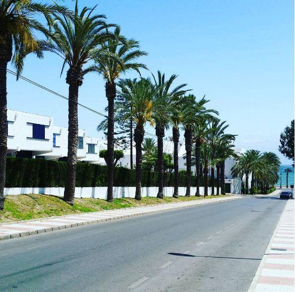 Homestay Exchange in Spain (De 3 a 6 meses)