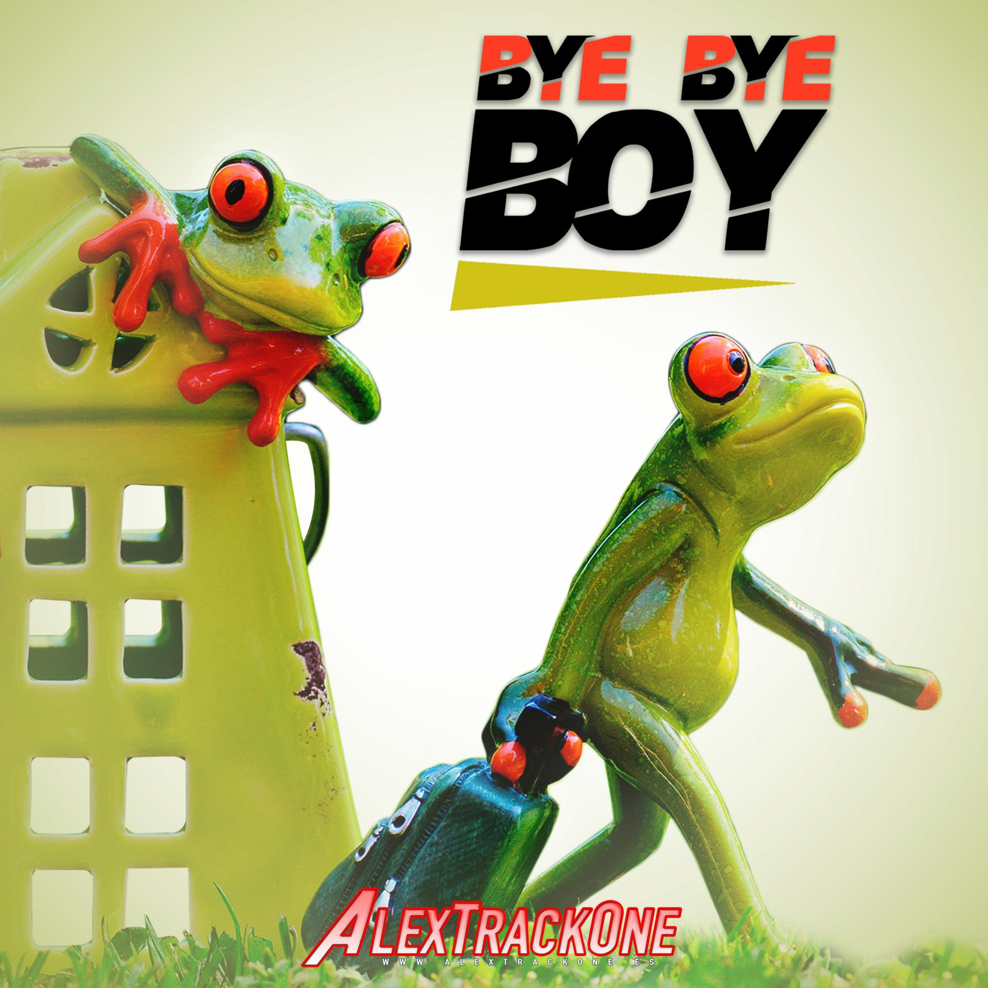 BYE BYE BOY -Original Mix-