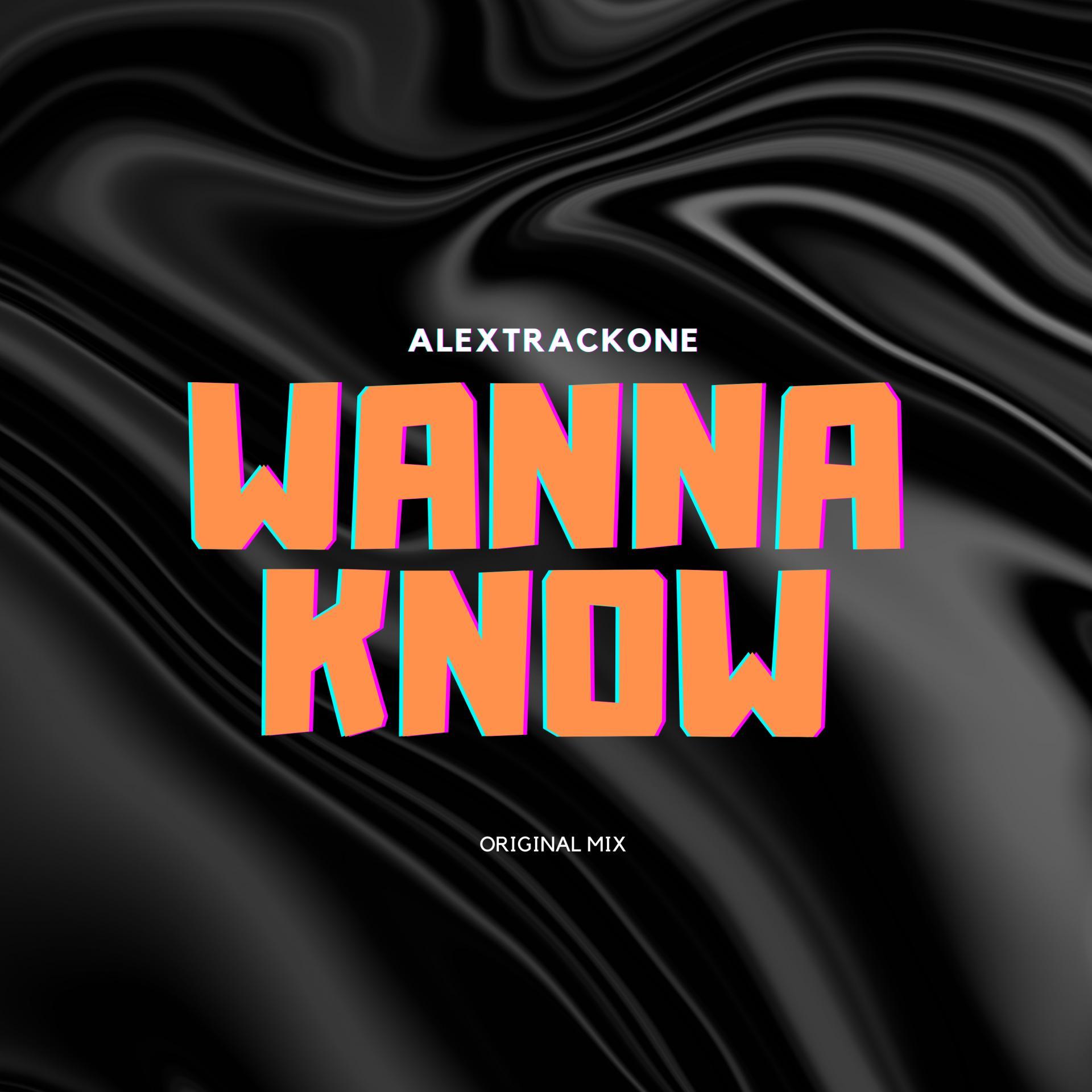WANNA KNOW -ORIGINAL MIX-