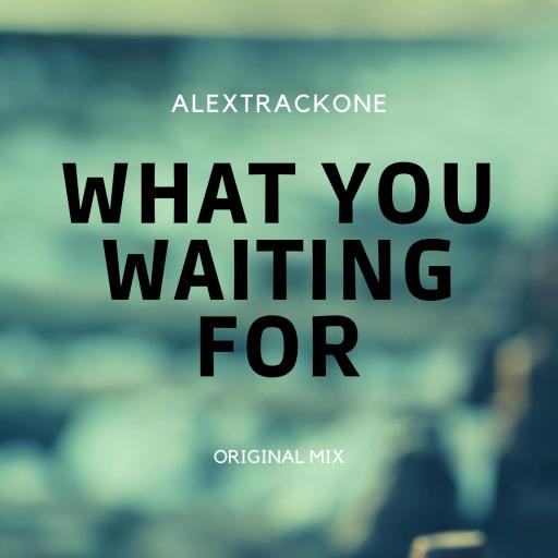WHAT YOU WAITING FOR -ORIGINAL MIX-