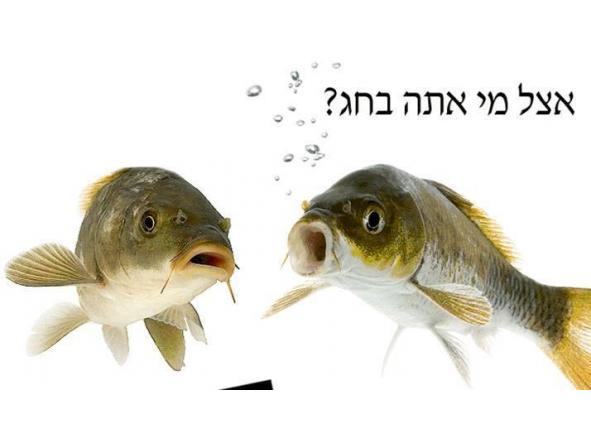 Iniciación a la conjugación de preposiciones en hebreo - lunes 10 de julio 16.00 [3]