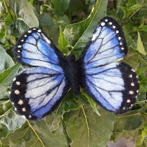 Broche Mariposa [1]