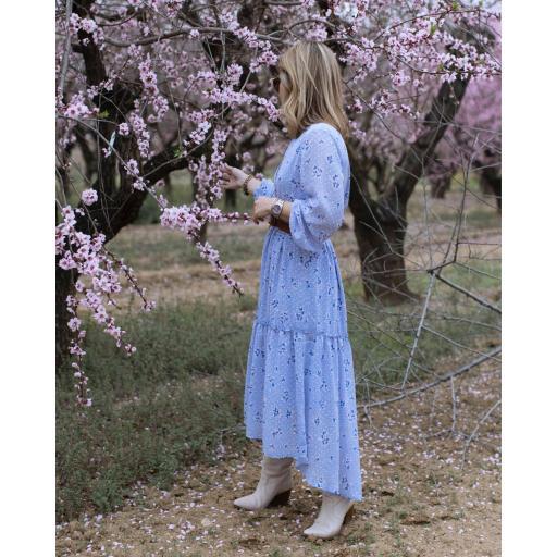 The Blue Dress (Ref.5423) [2]
