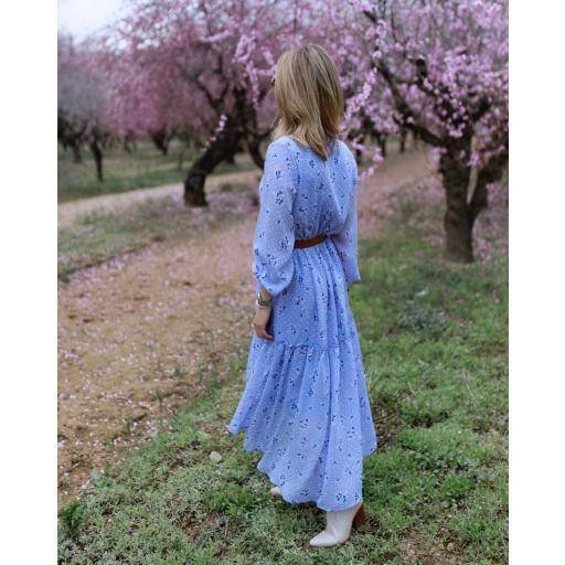 The Blue Dress (Ref.5423) [1]