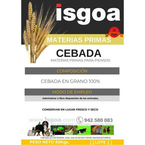 Saco Cebada Isgoa